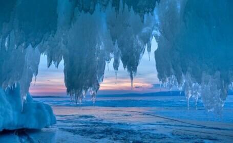 Un animal a supraviețuit 24.000 de ani în solul înghețat din Siberia. După decongelare, a fost capabil de reproducere