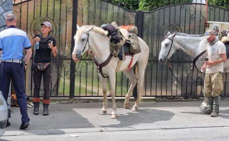 Doi turiști-călăreți s-au rătăcit în Craiova. Ce spun despre România