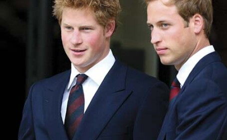 William si Harry