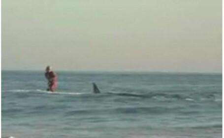 Surf printre rechini