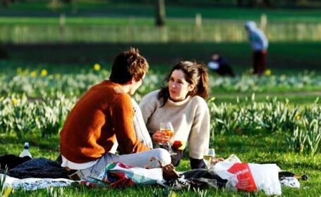 primavara, cuplu la iarba verde