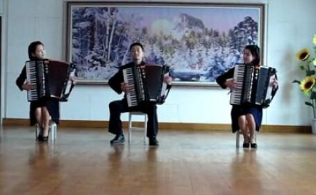 coreeni canta la acordeon