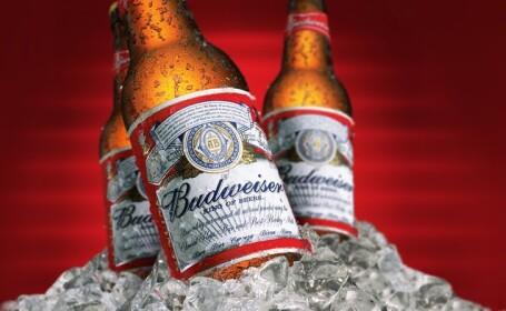 Acuzata ca pune prea multa apa in bere, compania ce produce Budweiser raspunde in 10 ziare nationale