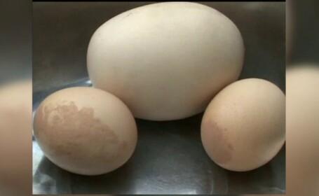 Descoperirea bizara facuta de o femeie din China intr-un ou urias, de 200 de grame