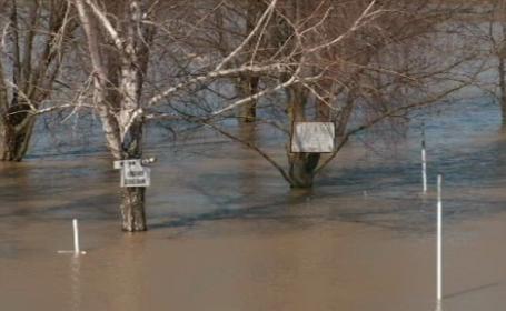 inundatii Ungaria