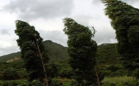 Temperaturi in crestere, dar si precipitatii si intensificari ale vantului in Bucuresti. Prognoza meteo pana luni