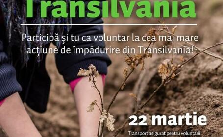 Padurea Transilvania, cea mai mare actiune de impadurire din Ardeal isi incepe activitatea