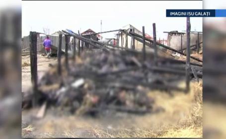 400 de animale si paznicul lor au murit intr-un incendiu, in Galati. O tigara aprinsa ar fi declansat focul, spun pompierii