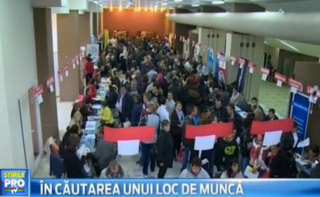 Record de angajatori la bursa locurilor de munca din Oradea. Sunt disponibile aproape 1.000 de joburi