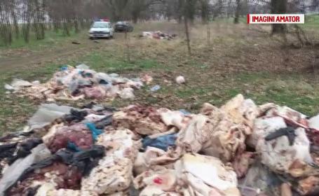 3 tone de carne, gasite pe un camp din Buzau. Descoperirea facuta de inspectorii de mediu pe etichetele produselor