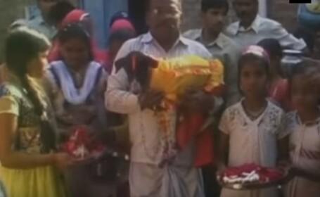 nunta caini India