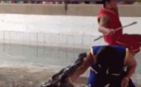 A bagat mana in gura unui crocodil, iar ce a urmat i-a ingrozit pe cei care priveau de pe margine: VIDEO