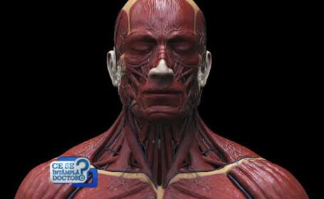 Creatorul chirurgiei plastice romanesti, despre semnele imbatranirii. Operatia care lupta cu efectele gravitatiei
