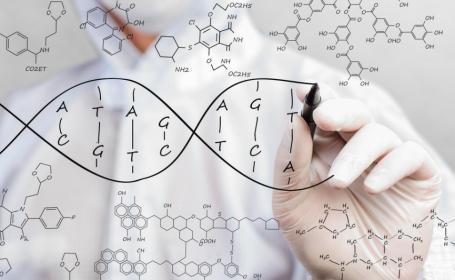 genetica, ADN