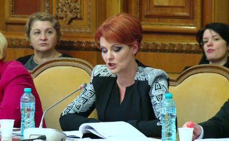 """Olguţa Vasilescu: """"Scăderile salariale din sănătate şi din asistenţă socială în februarie, normale"""""""