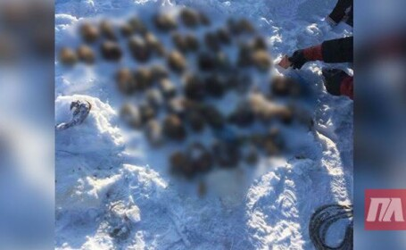 Sac cu 54 de mâini tăiate, găsit într-un râu din Siberia
