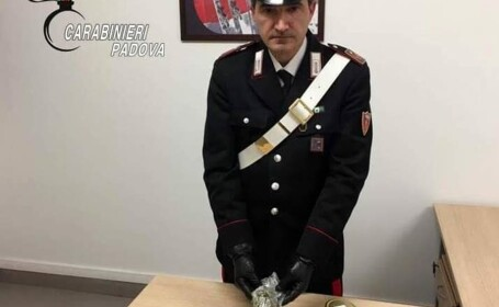 marijuana confiscata