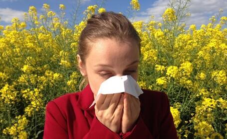 Alergie polen, CSID