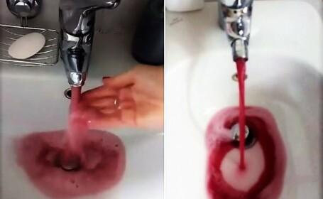 A început să curgă vin la robinet, într-un orășel din Italia. Cum a fost posibil