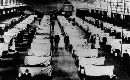 pandemii