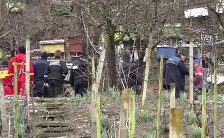 Ursul care terorizează un cartier din Târgu Mureș va fi relocat săptămâna viitoare