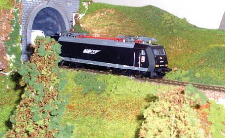 trenuri miniaturale