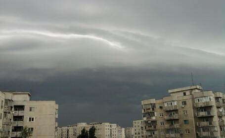 nori furtuna