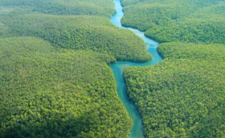 Vacanta de 35.000 de euro. Romanii dau plaja din Grecia pe vanatoarea in jungla amazoniana