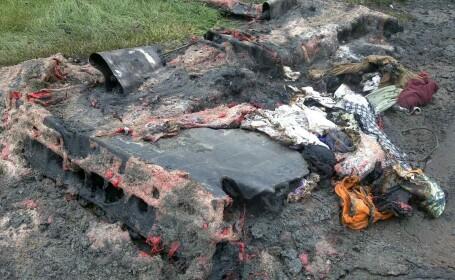 Incendiu intr-un parc din Timisoara. Doua toalete ecologice au ars in intregime