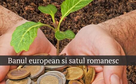 romania, bani