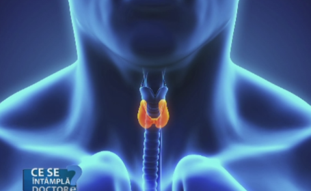 Fluctuatiile hormonilor tiroidieni, daunatoare pentru organism. Sfaturile medicilor pentru o viata sanatoasa