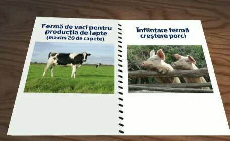 Statul sare in ajutorul romanilor care vor sa acceseze fonduri UE pentru agricultura. Proiectele care iti garanteaza reusita