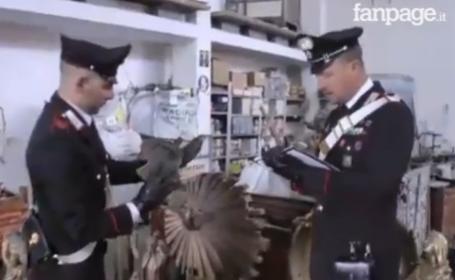 Un roman care conducea o masina furata a fost arestat in Italia. Captura impresionanta a politistilor cand au refacut traseul