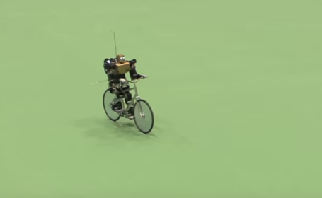 robotel pe bicicleta