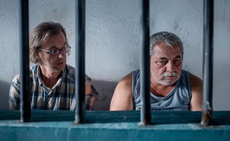 Sase productii in premiera mondiala in Zilele Filmului Romanesc la TIFF
