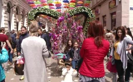 Festival de flori in centrul Timisoarei. Artisti din toata Europa au creat decorul impresionant