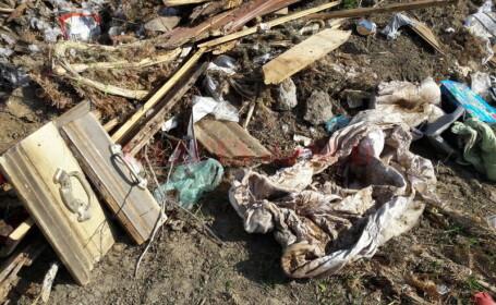 Un sicriu a fost gasit la marginea Craiovei. Ce au descoperit politistii inauntru este terifiant