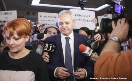 Guvernul cere CCR sa respinga exceptia ridicata de fosta sotie a lui Liviu Dragnea in dosarul ei de abuz in serviciu