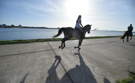 O tânără se plimbă călare pe malul lacului Morii din Bucureşti