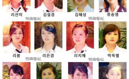 chelnerite nord-coreene disparute