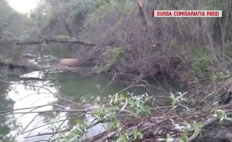 Dezastru ecologic. Cum acționează braconierii pentru a pescui pești din Delta Dunării