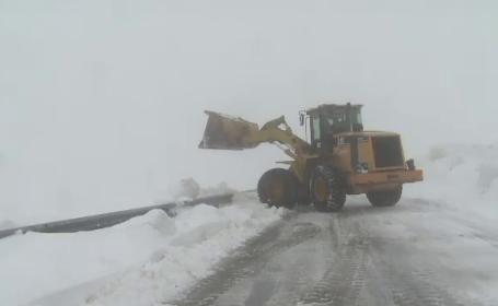 zăpadă Transalpina