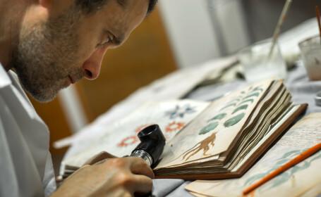 Manuscrisul Voynich, examinat de cercetători - 2