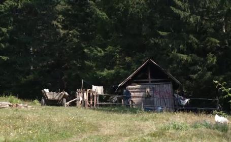 Crimă oribilă în Dâmbovița. Detaliile șocante ale unui plan care a îngrozit localnicii