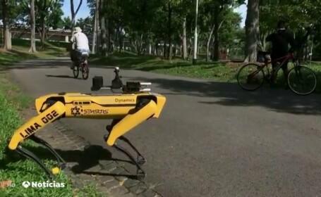 caine robot singapore