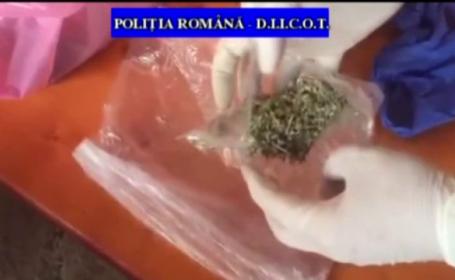Traficanți de droguri în Prahova. Ce au făcut oamenii legii