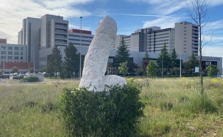 Statuia care a scandalizat un întreg oraș! A fost pusă în fața unui spital, iar locuitorii au cerut să fie distrusă imediat