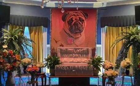 Un preot din SUA i-a organizat câinelui său o înmormântare extravagantă. Imagini incredibile