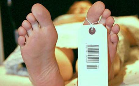 Britanicii ar putea fi obligati sa-si doneze organele
