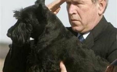 Cainele lui Bush a muscat un reporter!